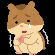 animal_character_hamster_kowai.png