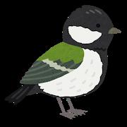 bird_shijukara.png