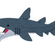 kodai_same_helicoprion.png